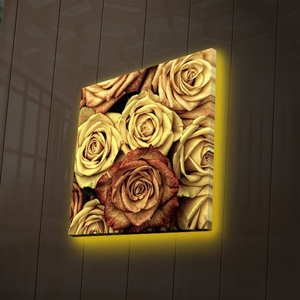 4040DACT-47 Multicolor Decorative Led Lighted Canvas Painting