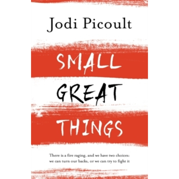 Small Great Things : 'to Kill a Mockingbird for the 21st Century'