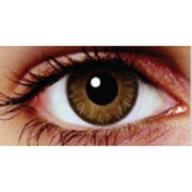 Oak Brown 3 Month Coloured Contact Lenses (MesmerEyez Blendz)