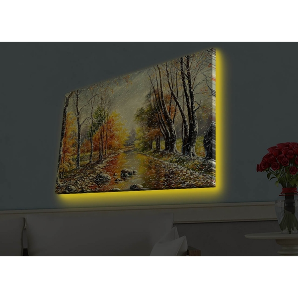4570HDACT-067 Multicolor Decorative Led Lighted Canvas Painting