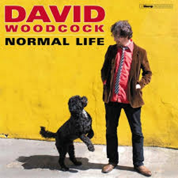 David Woodcock ‎– Normal Life Vinyl