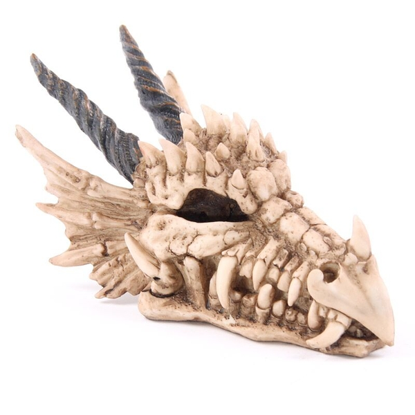 Dragon Skull Money Box