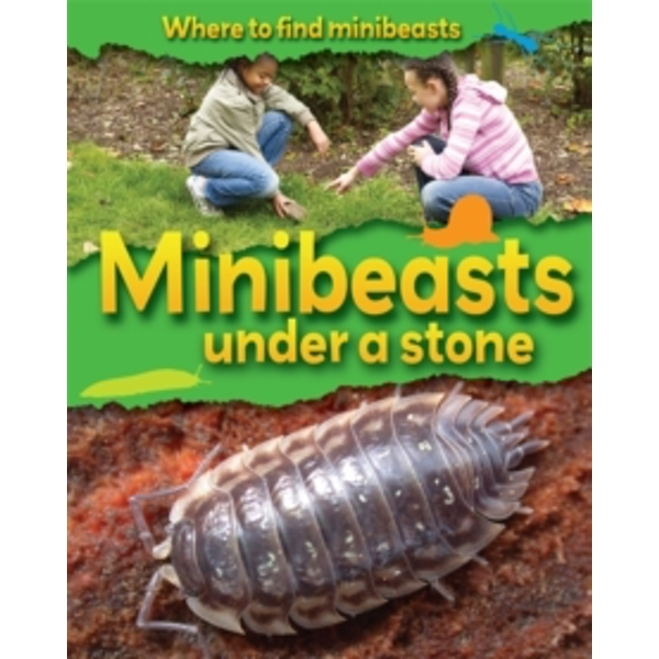 Minibeasts Under a Stone by Sarah Ridley (Paperback, 2011)